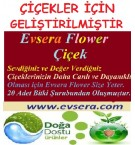 Evsera ÇİÇEK - Flover