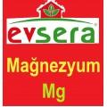 Evsera MAĞNEZYUM - Mg 50 CC