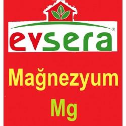 Evsera MAGNEZYUM - Mg 500 CC